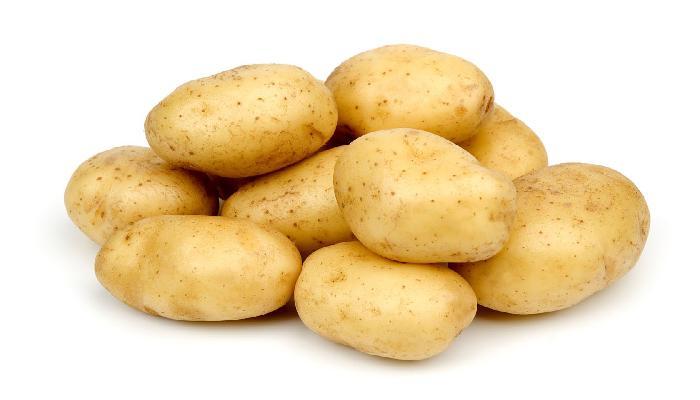 khoai tây chữa bệnh trĩ
